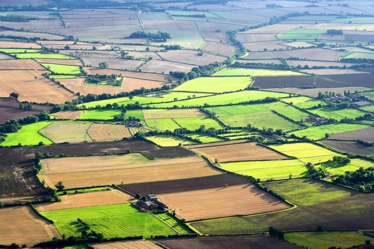 Jaunie lauksaimnieki pašvaldību zemi var nomāt ar izpirkuma tiesībām