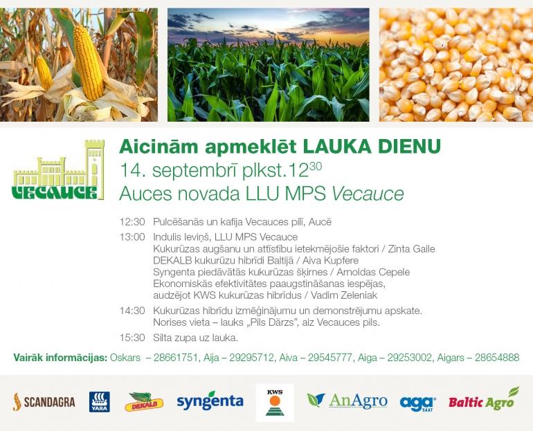 Kukurūzas lauku diena Vecaucē 14.septembrī
