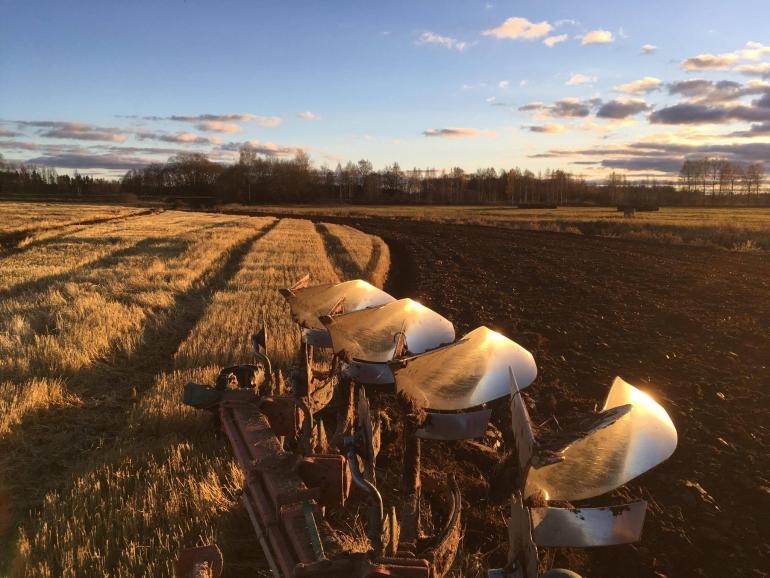 """Kursi """"Augsnes auglības uzlabošanas iespējas lauksaimnieciskā ražošanā"""""""