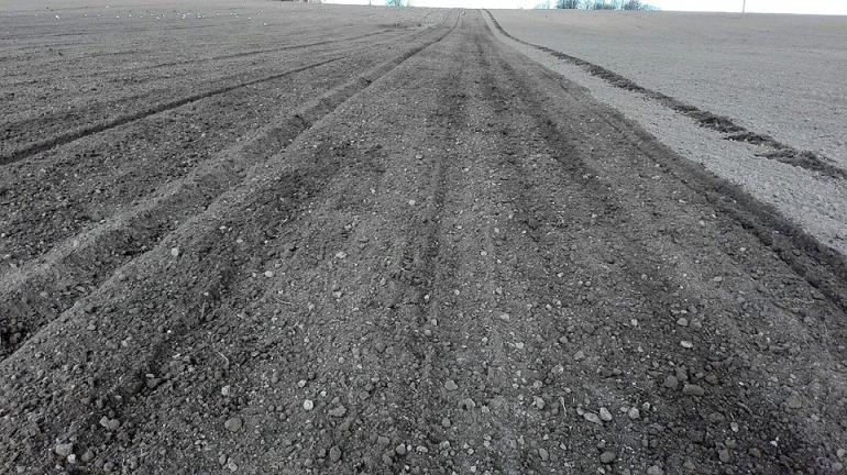 Zemnieku saimniecība Jelgavas novadā aicina darbā uzticamu komandas biedru